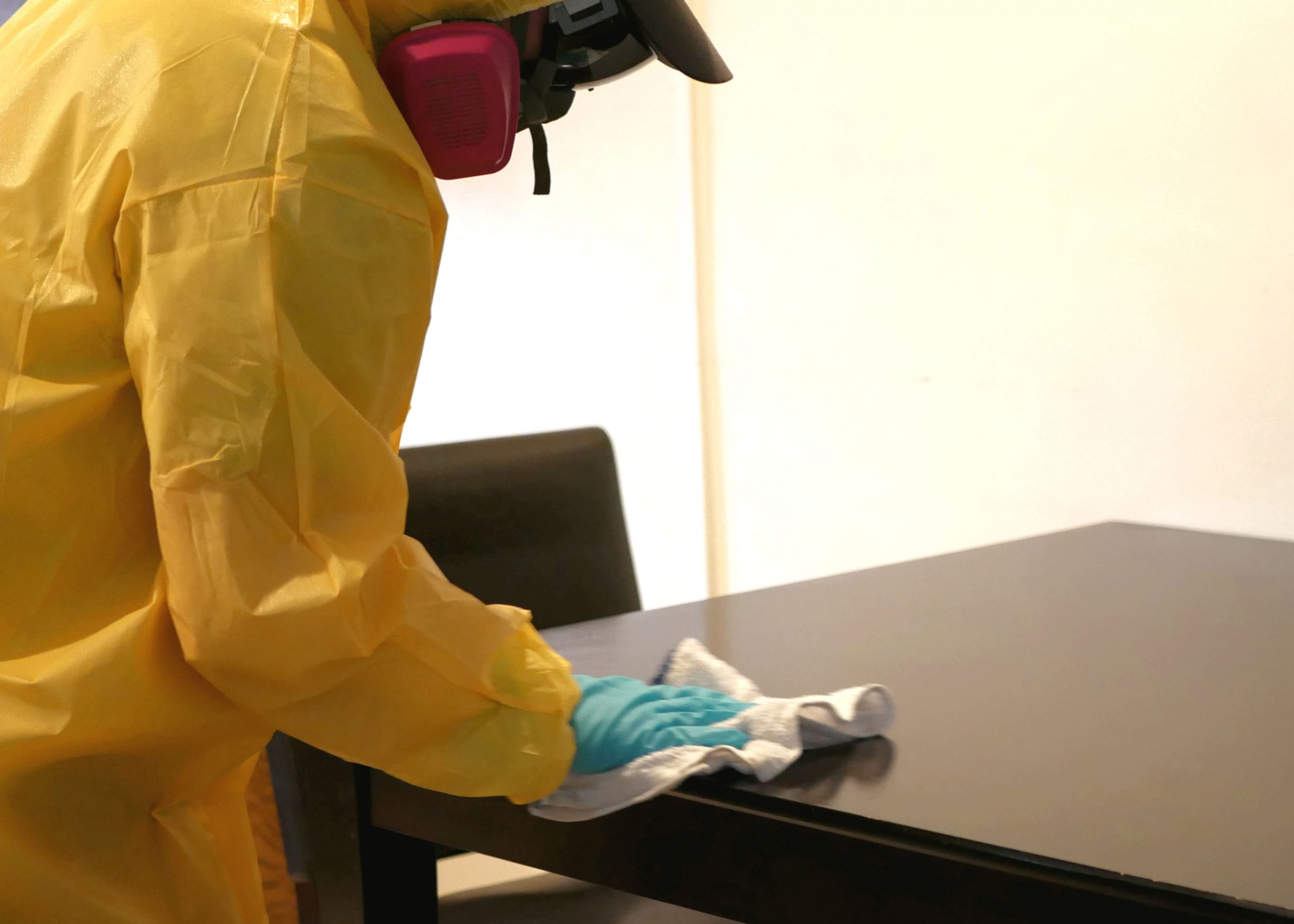 sanitization and disinfection of homes
